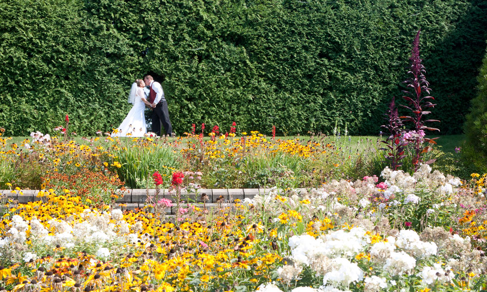 Nature wedding garden